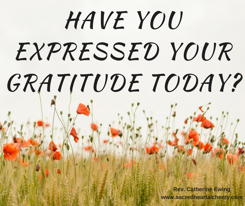 The Gifts in Cultivating Gratitude